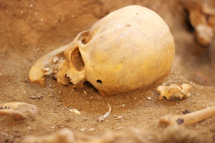 Las im?genes del horror de la Guerra Civil, al descubierto en Medina del Campo