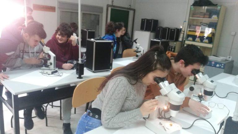 El Colegio San José visita al IES Gomez Pereira para informarse de las distintas modalidades de Bachillerato