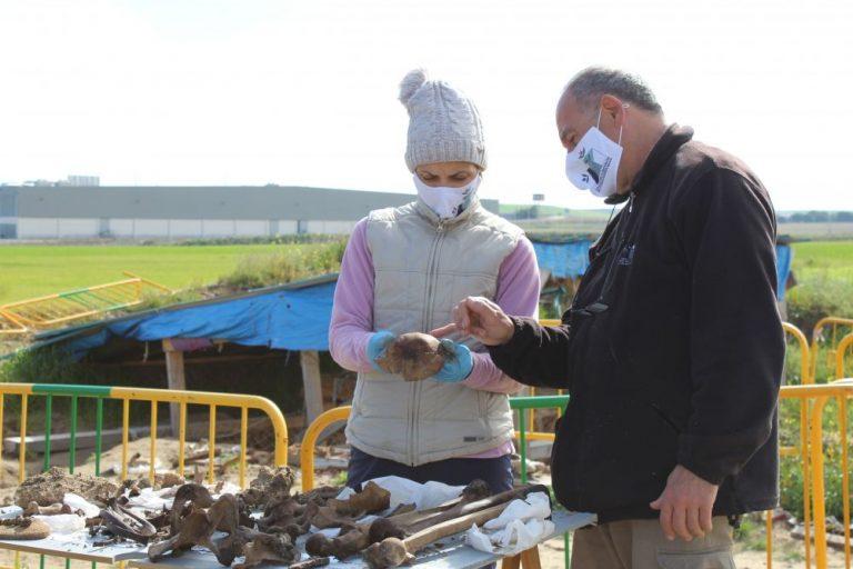 Finaliza la exhumación en el pozo medinensecon el hallazgo de 37 víctimas de la represión