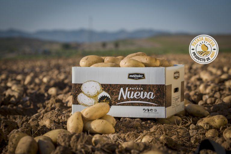 Patatas Meléndez recibe más de un millón de euros para transformación y comercialización alimentaria